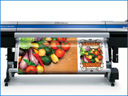 Colour Digital Printing in Halifax NS photo4
